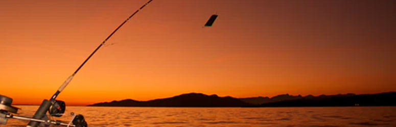 Fishing rod and sunset at Baja